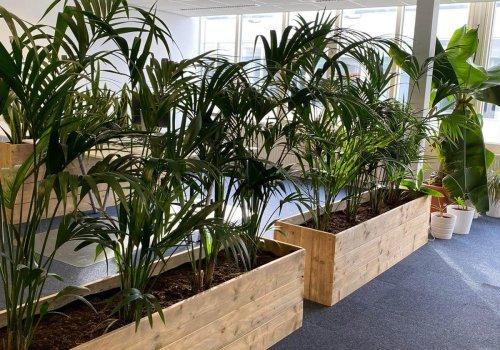Bloembakken van steigerhout in kantoor