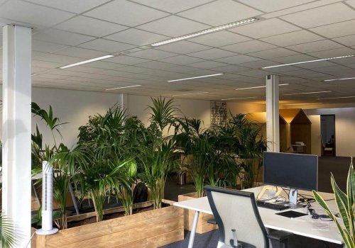 Steigerhouten bloembakken room divider in kantoor